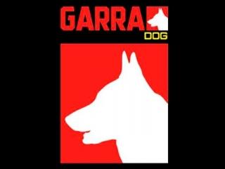 Garra Dog