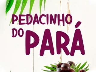 Pedacinho do Pará